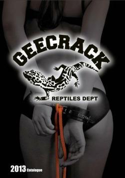 geecrack-2013