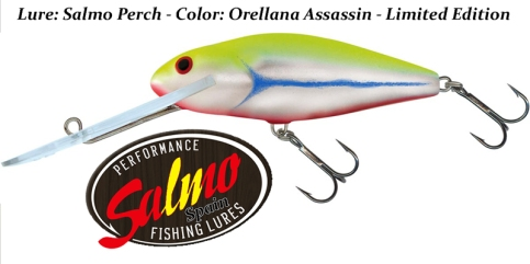 salmo-perch-orellana-assassin