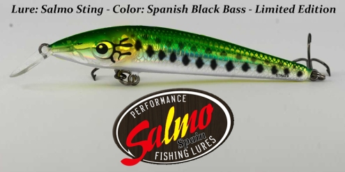 salmo-sting-black-bass